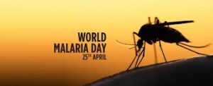 world malaria report