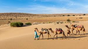 Mind-blowing facts about Rajasthan