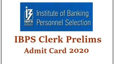 ibps clerk x admit card 2020